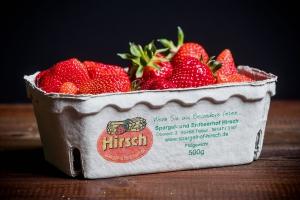 Schale mit 500 g großen Erdbeeren vom Spargel- und Erdbeerhof Hirsch in Trebur 500 g