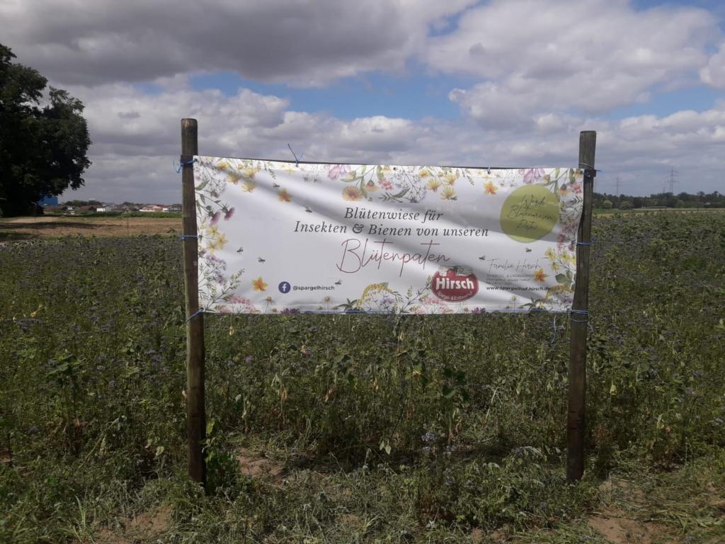 Banner für die Bühfläche in Groß-Gerau - und dann gibt's Wasser !
