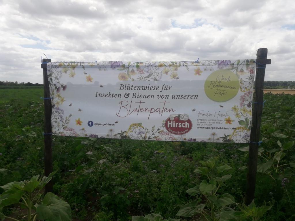 Neuer Banner für die Blühfläche in Trebur