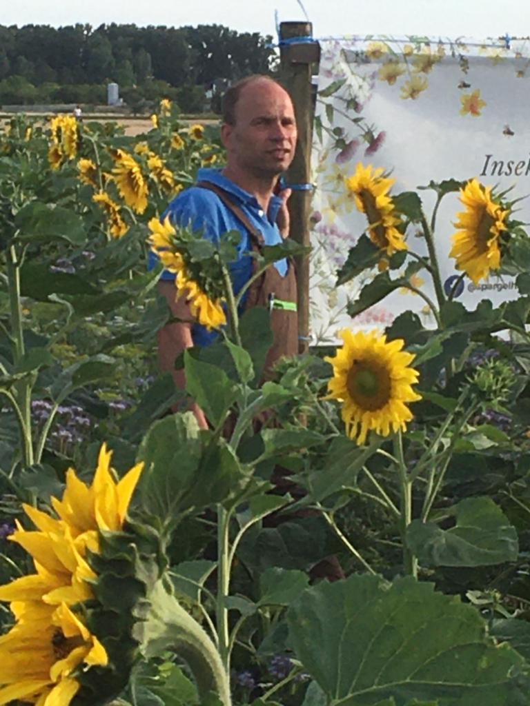 Jörg Hirsch auf einer Blühfläche der Blütenpat*innen im Sommer 2020